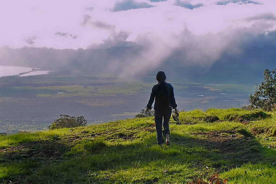 Explore Upcountry Maui